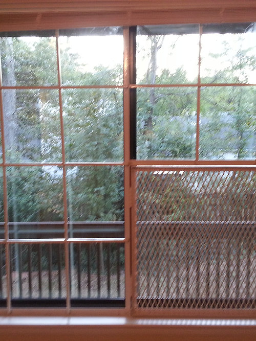 Window Burglar Bars