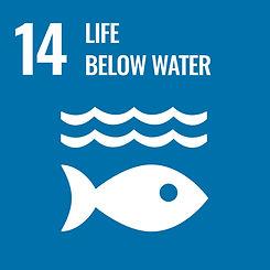 Life below water SDG