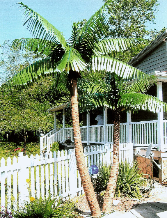 Artificial Palm Leaves Outdoor Trees Tropical