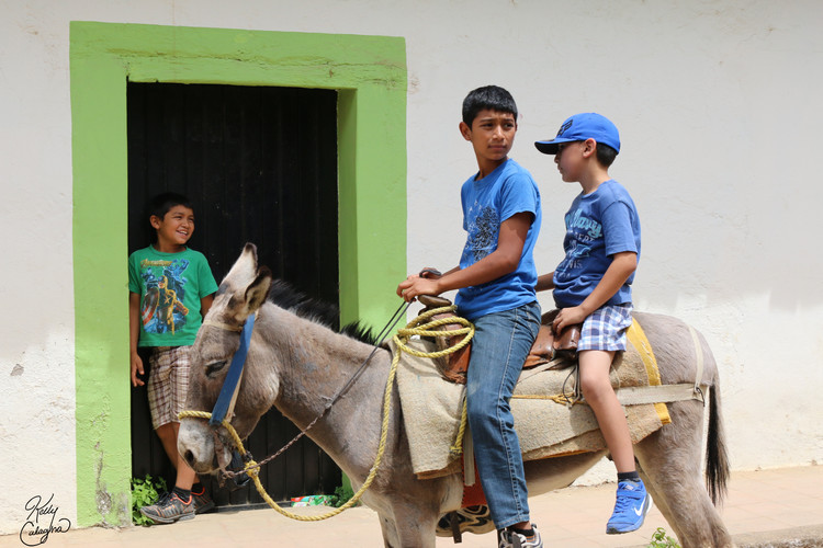 Boys and Their Burro, Mexico.JPG