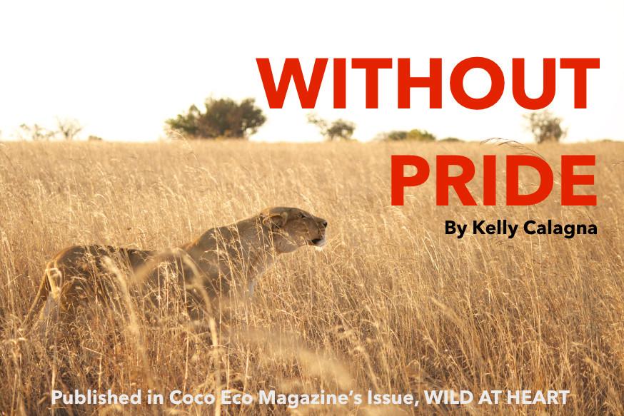 without-pride-header.jpg