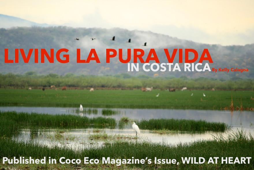 living-la-pura-vida-header.jpg