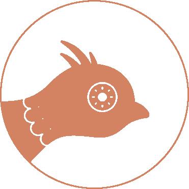 popup_circular.png