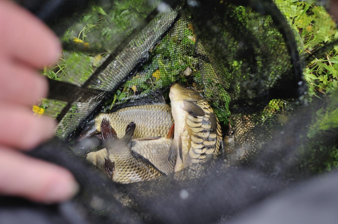 Рыбалка БО Юромка 6
