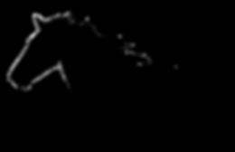 Harvest Horsemanship Logo.png