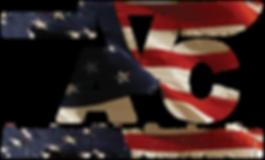 american value contruction logo