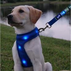 lighted-dog-harness-24.gif.jpeg