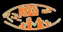 Logo BVES orange.png