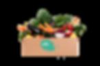 Gemüse_Box_classic