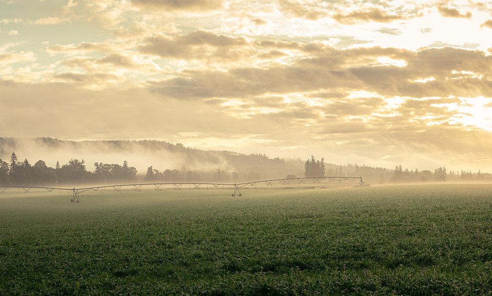 Morning Golden Hour Panorama