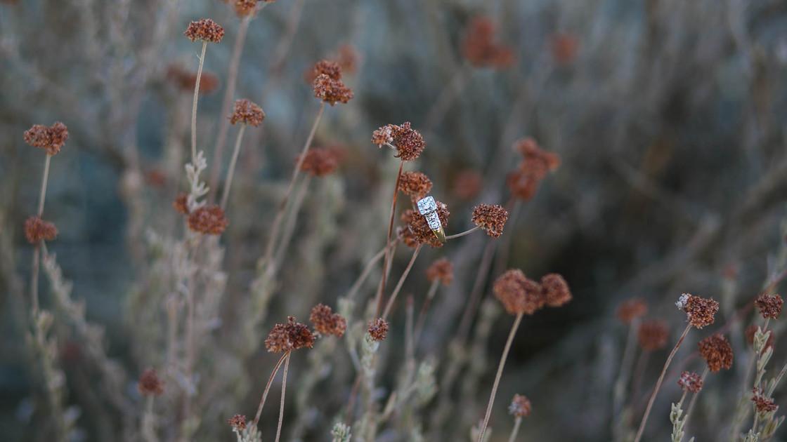 Melissa Jean Photography - Creston Engag