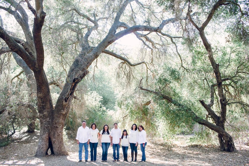melissa jean photography - corona family