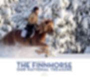 The Finnhorse Our National Treasure -book Kansallisaarteemme suomenhevonen -kirja Kirjakaari Oy Sanna Karppinen Marianne Ketelimäki