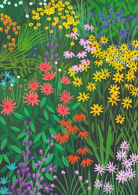 Colourful Floral Garden