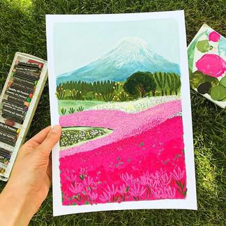 Mount Fuji Flower Field