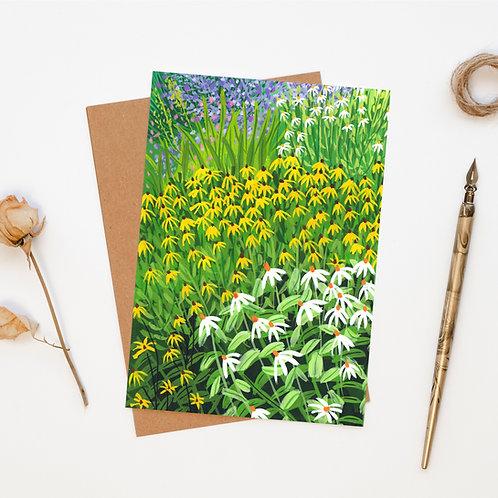 Echinacea Flower Garden Greeting Card