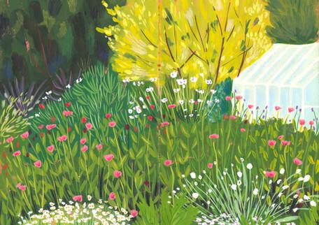 Wild Greenhouse Garden