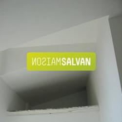 SALVAN_LOGO