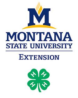 Montana 4-H