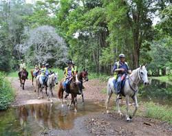 horse-riding-trail2