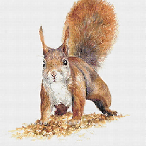 Sammy Squirrel Cross Stitch Kit
