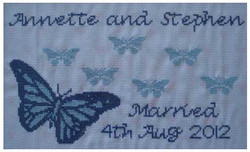 PA14-BLU-Large-Blue-Wedding-Butterfly-no