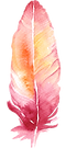 kisspng-pink-feather-download-creative-f