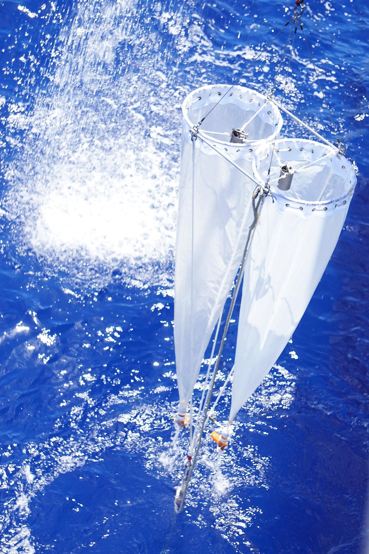 プランクトンネットによる動物プランクトンの採集