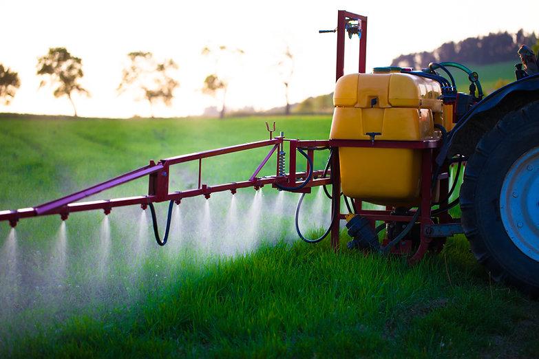 Tractor spraying wheat field with spraye