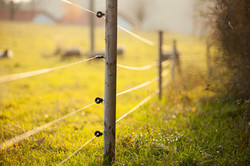 Electric fencing around lovely pasture w