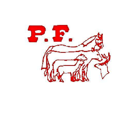 POSITIVE FEED LTD.