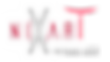 Nixart Studios (Logo).png