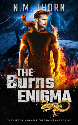 The Burns Enigma by N.M. Thorn
