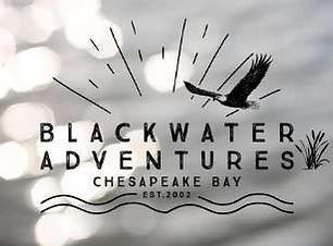 chesapeake bay.jpg