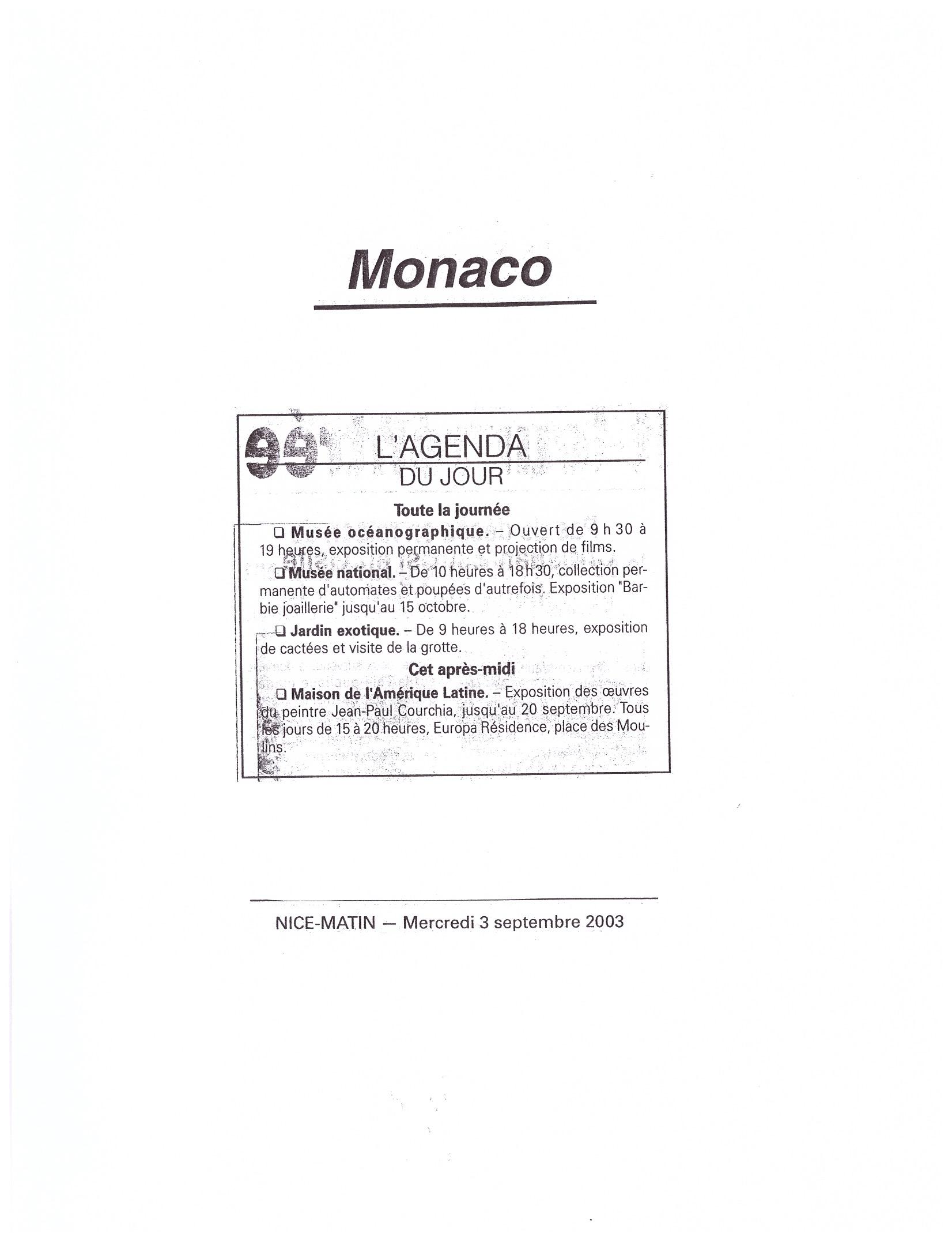 2003 MONACO P 6