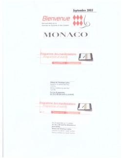2003 MONACO P 28