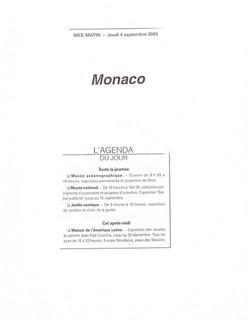 2003 MONACO P 14