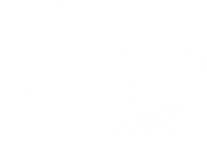A brain drawing representing creativity, connection, and learning