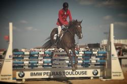 Obstacle d'équitation