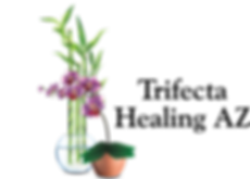Trifecta Healing AZ Logo - Horizontal.pn