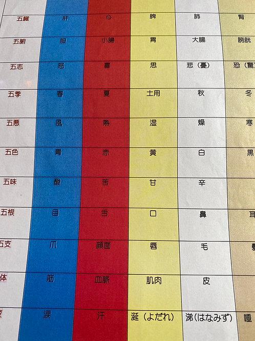 夏季集中ゼミ ② 中国の自然哲学からなる五行論