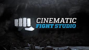 Cinematic Fight Studio
