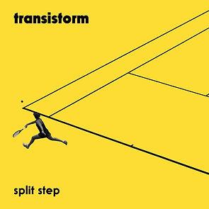 SplitStep.jpg