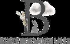 Buitengewoonwijs_logo_edited_edited_edit