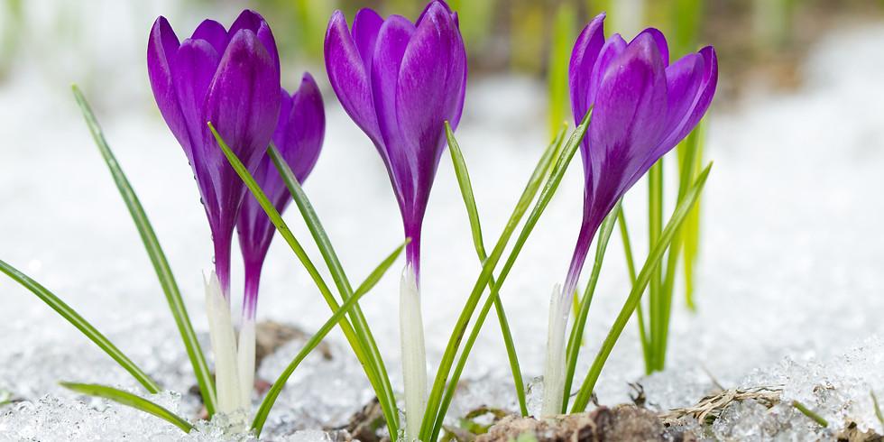 Renewal:  Spiritual Practices in Changing Times