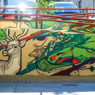 Graffiti in The School