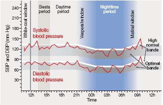 How many measurements are needed to estimate blood pressure variability without loss of prognostic