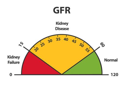 Progresión y regresión de la enfermedad renal crónica