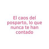 Rosa_Blanco_Círculo_Flor_Verano_Citas_I
