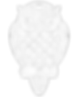 transparent owl 4 white 1.png